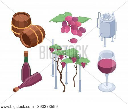 Winery Isometric. Vineyard Technology Processes Barrels For Grape People Bottling Machines Vector Se