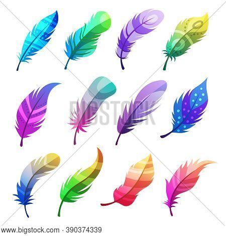 Feather Colored. Stylized Decorative Tribal Ornaments On Feathers Of Birds Vector Illustrations Set.