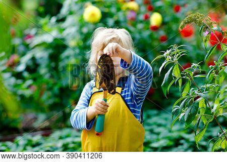 Adorable Little Toddler Girl Working With Shovel In Domestic Garden. Cute Child Learn Gardening, Pla