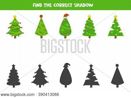 Matching Shadows Game. Find Shadows Of Fir Tree.