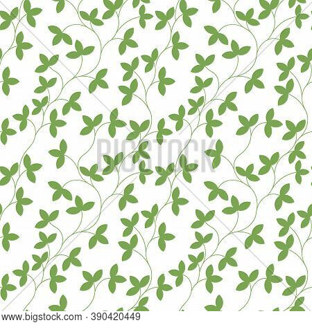 Seamless Pattern. Thin Green Delicate Twigs With Leaves Isolated On White Background. Texture For Pr