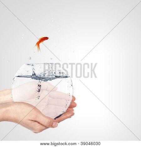 Illustration with goldfish in aquarium on white background