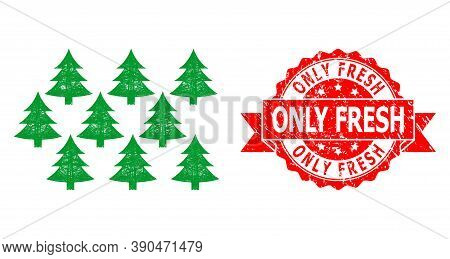 Wire Frame Fir Forest Icon, And Only Fresh Dirty Ribbon Seal. Red Seal Includes Only Fresh Tag Insid