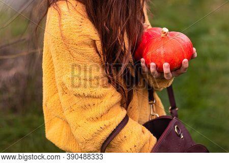 At Autumn Seasonal Farm Market. Girl Buying Pumpkins Before Halloween Spooky Season. A Young Girl In
