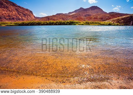 Amazing wildlife. USA. Lee's Ferry is a historic boat ferry. Steep river banks of red sandstone. Smooth turn of the magnificent Colorado River. The concept of active, extreme and photo tourism