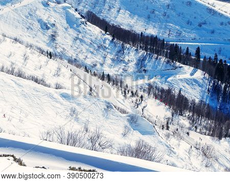 Ski Slopes With Pistes And Trees Along. View From Above