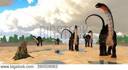 Apatosaurus Dinosaur Coastline 3d Illustration - A Herd Of Apatosaurus Dinosaurs Amble Down An Estua