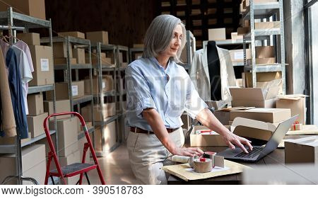 Older Middle Aged Business Woman Entrepreneur, Fashion Clothing Seller Using Laptop Checking Ecommer