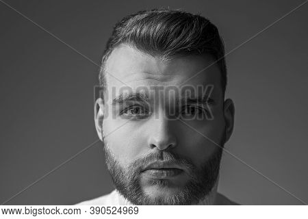 Well Groomed Bearded Man Stylish Appearance. Hairstyle Barber. Man Bearded Macho Close Up Face. Barb