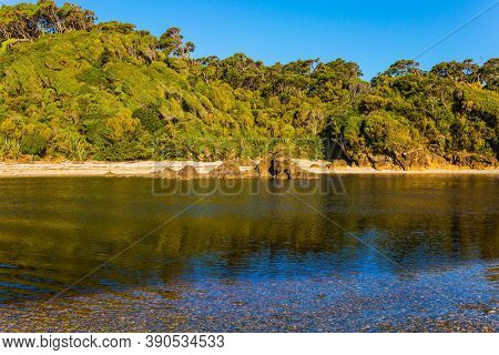 Picturesque magic reflections of overgrown shores. Road to Knight's Point Lookout. Puddles of ocean water on the shore. Pacific coast at low tide. New Zealand, South Island.