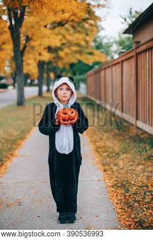 Trick Or Treat. Happy Cute Child Boy With Red Pumpkin Going To Trick Or Treat On Halloween Holiday.