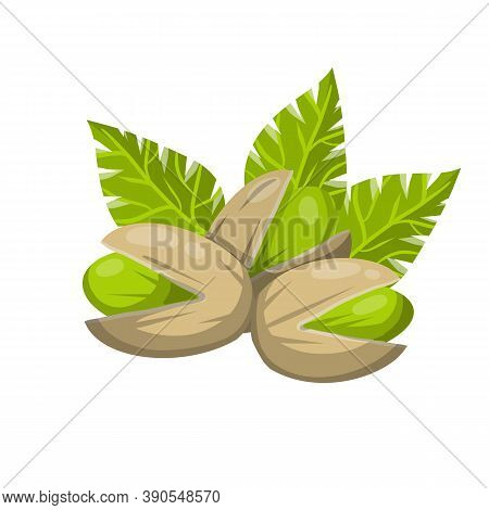 Pistachios. Vector Green Nuts In Their Shells.