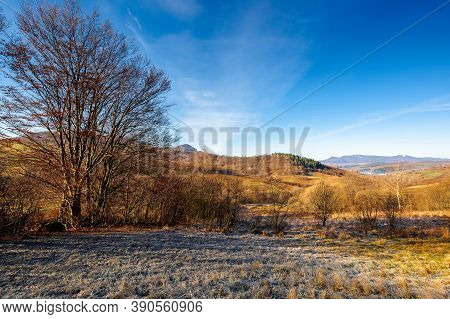 Autumnal Rural Landscape Of Carpathian Mountains. Beautiful Sunny Weather On November Frosty Morning