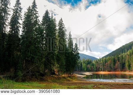 Mountain Lake Among The Coniferous Forest. Wonderful Nature Scenery In Autumn. Dry Sunny Weather Wit
