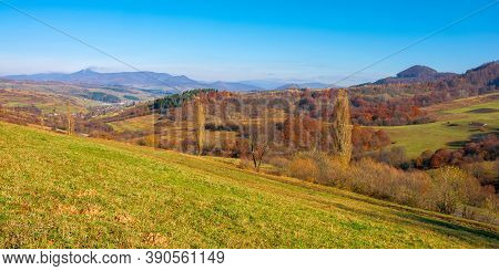 Mountainous Countryside On A Sunny Day. Trees In Colorful Foliage On The Grassy Hills. Ridge In The