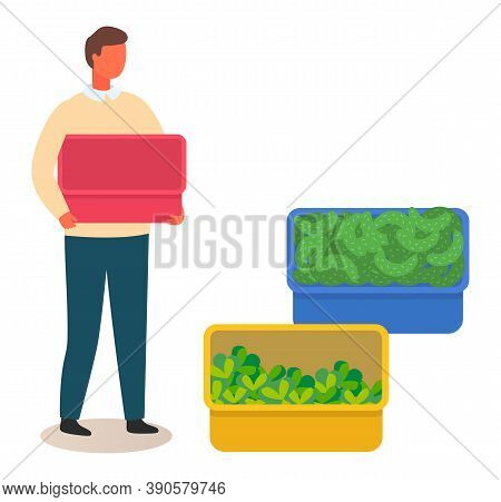 Young Man Or Farmer Holding An Empty Red Box, A Blue Box With Cucumbers And A Yellow Container With