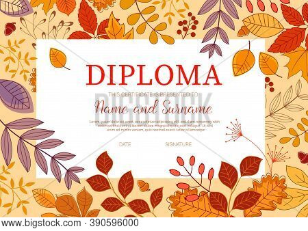 Kids Diploma Template With Autumn Leaves. Trees And Shrubs Branch With Leaves, Forest Berries And Ac
