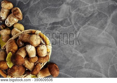 Autumn Cep Mushrooms. Ceps Boletus Edulis Over Wooden Dark Background, Close Up On Wood Rustic Table