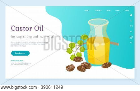 Castor Oil Info Poster, Jar With Poured Oily Essence From Seeds Of Ecological Element For Cosmetics.