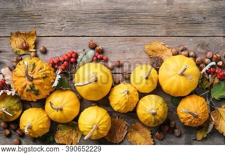 Autumn Background With Corn,  Pumpkins, Nuts, And Leaves On Wooden Tabel, Space For Text. Pumpkins.