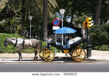 Horse and carriage. Transport. Transportation for tourists in the Spansih cities to go around the city and the landmarks. poster