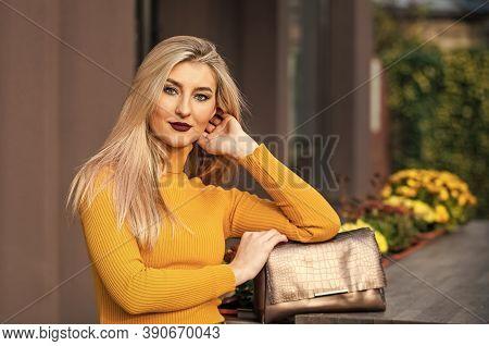 Bronze Handbag Clutch For Woman. Luxury Leather Purse. Shopping Sale And Discount. Fashion Purse. Pr