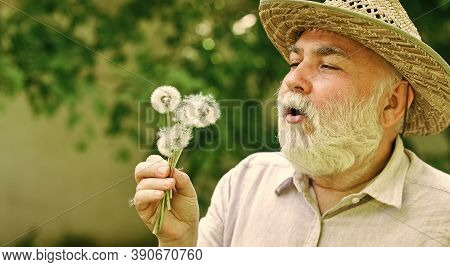 Harmony Of Soul. Peaceful Grandpa Blowing Dandelion. Happy And Carefree Retirement. Peace Of Mind. E