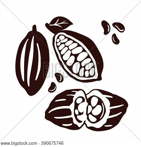 Brown Cocoa Beans And Leaves Set. Chocolate Beans. Vintage Illustration Template.