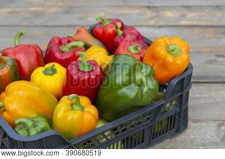 Fresh Colorful Bell Pepper Box On Wooden Table. Close Up.
