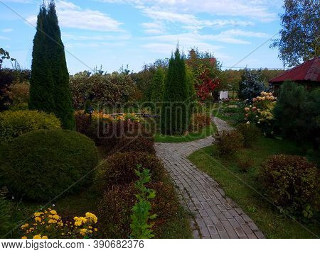 Natural Landscaping In Home Garden. Beautiful View Of Nice Landscaped Garden In Backyard. Scenery Of