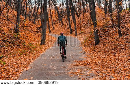 A Cyclist Riding A Bike In An Autumn Park. Professional Mountain Bike Cyclist Riding Trail In Forest