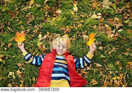 Little Boy Having Fun During Stroll In Forest At Sunny Autumn Day. Playful Child Laying On Grass And