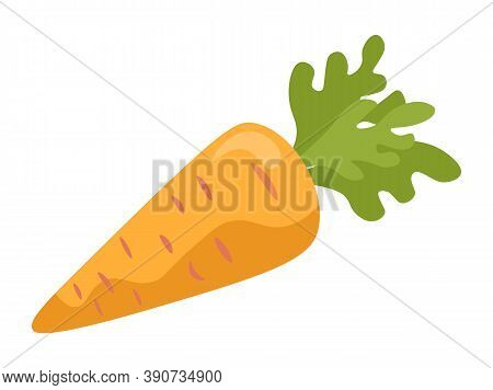 Carrot With Green Leaves Isolated Vegetarian Food. Vector Illustration Of Nutrition Vegetable, Orang