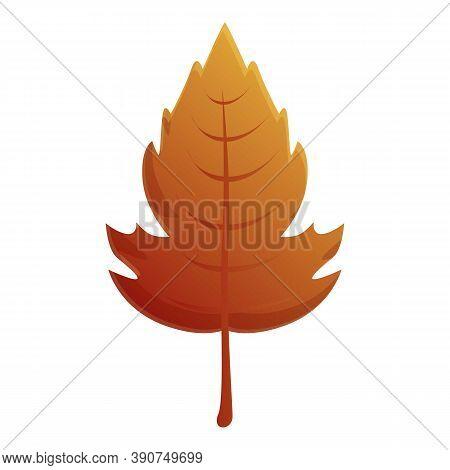 Viburnum Autumn Leaf Icon. Cartoon Of Viburnum Autumn Leaf Vector Icon For Web Design Isolated On Wh