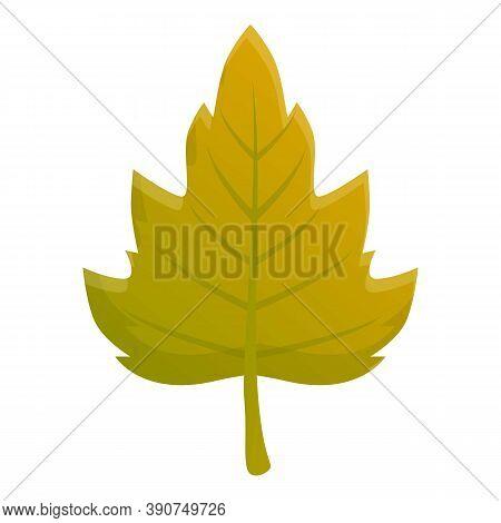 Viburnum Autumn Green Leaf Icon. Cartoon Of Viburnum Autumn Green Leaf Vector Icon For Web Design Is