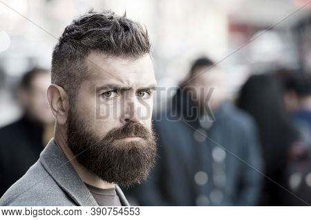 Bearded And Cool. Barber Tips Maintain Beard. Hipster Appearance. Stylish Beard And Mustache Fall An