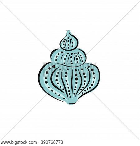 Hand Drawn Seashell. Vector Art Illustration. Sketch And Doodle Graphic Collrction.
