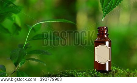 Alternative Green Herbs, Natural Skin Care Cosmetics, A Drop Falling Into The Bottle - Concept