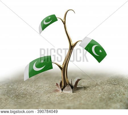 3d Illustration. 3d Sprout With Pakistan Flag On White