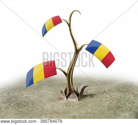 3d Illustration. 3d Sprout With Romanian Flag On White