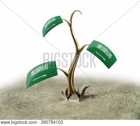 3d Illustration. 3d Sprout With Saudi Arabia Flag On White