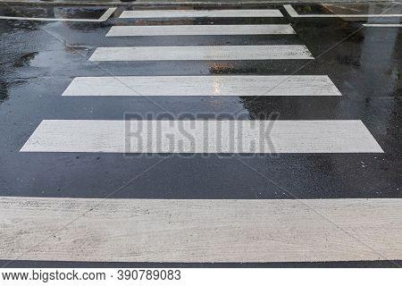 Slippery When Wet Road Crossing At Rain