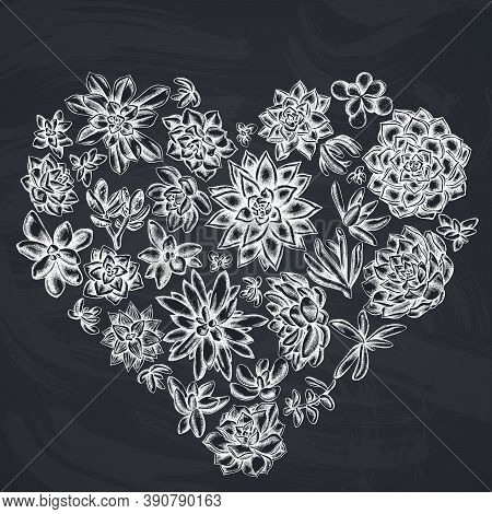 Heart Floral Design With Chalk Succulent Echeveria, Succulent Echeveria, Succulent Stock Illustratio