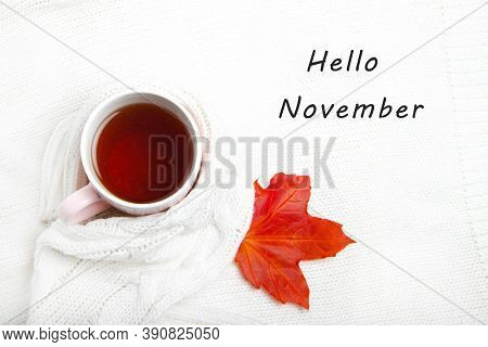 A Cup Of Tea In A Knitted Sweater . Hello November. Postcard With Text. Hot Tea. Autumn. Autumn Mood