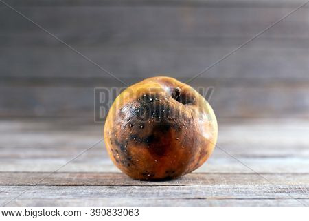 Bad And Rotten Apple. Ugly Trendy Bad Apple On Wooden Background. Rotten Disgusting Apple.