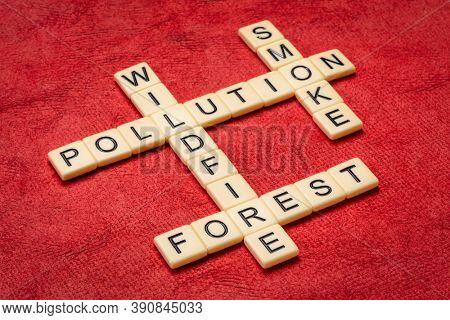 forest wildfire, pollution and smoke crossword in ivory lettertiles against textured handmade bark paper, environmental concept