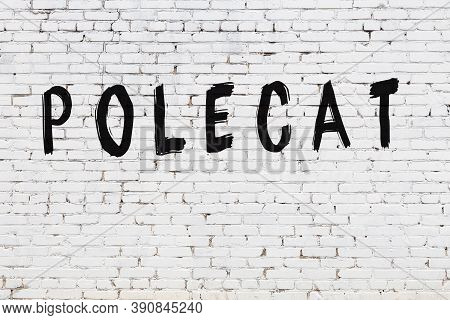 Inscription Polecat Written With Black Paint On White Brick Wall.