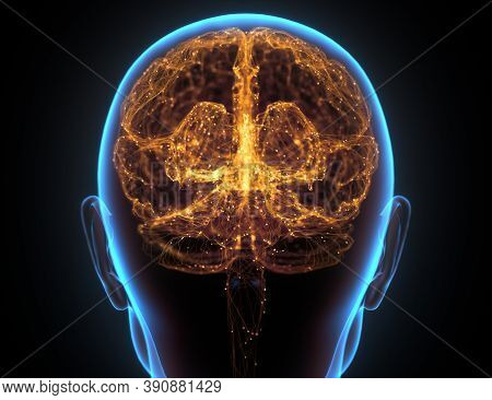 X-ray Of The Head And Human Brain In Concept Of Neural Connections And Electrical Pulses. 3d Illustr