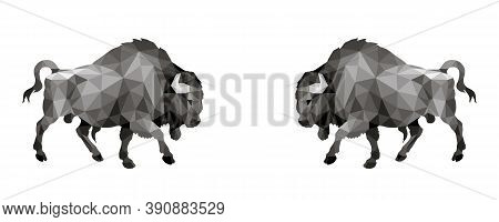 Two Bison, Two Bulls,isolated Monochrome Image On A White Background In A Low-poly Style