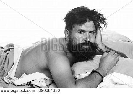 Joyful Man Sleeping On A Bed. Man Bearded Hipster Having Problems With Sleep. Violations Of Sleep An